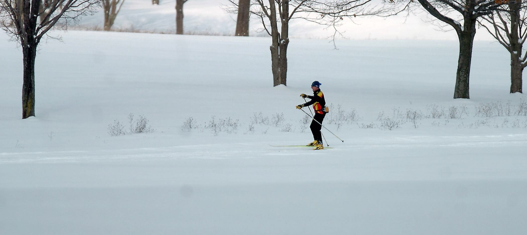 Huron Clinton Metroparks cross country skiing