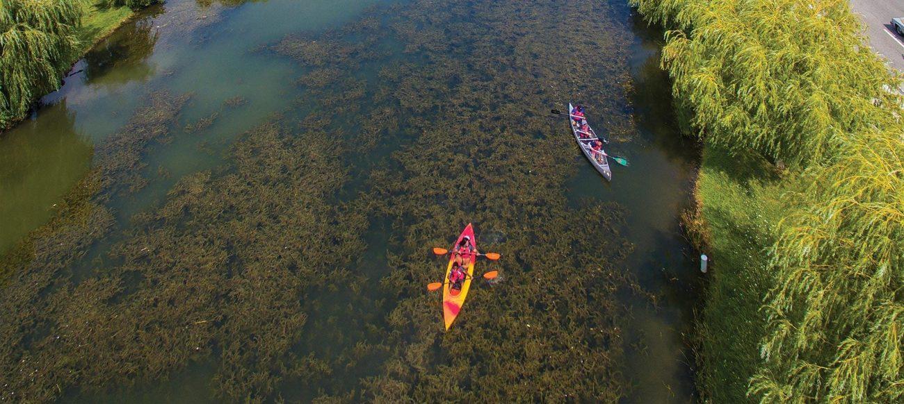 Kayaks at Belle Isle Park overhead