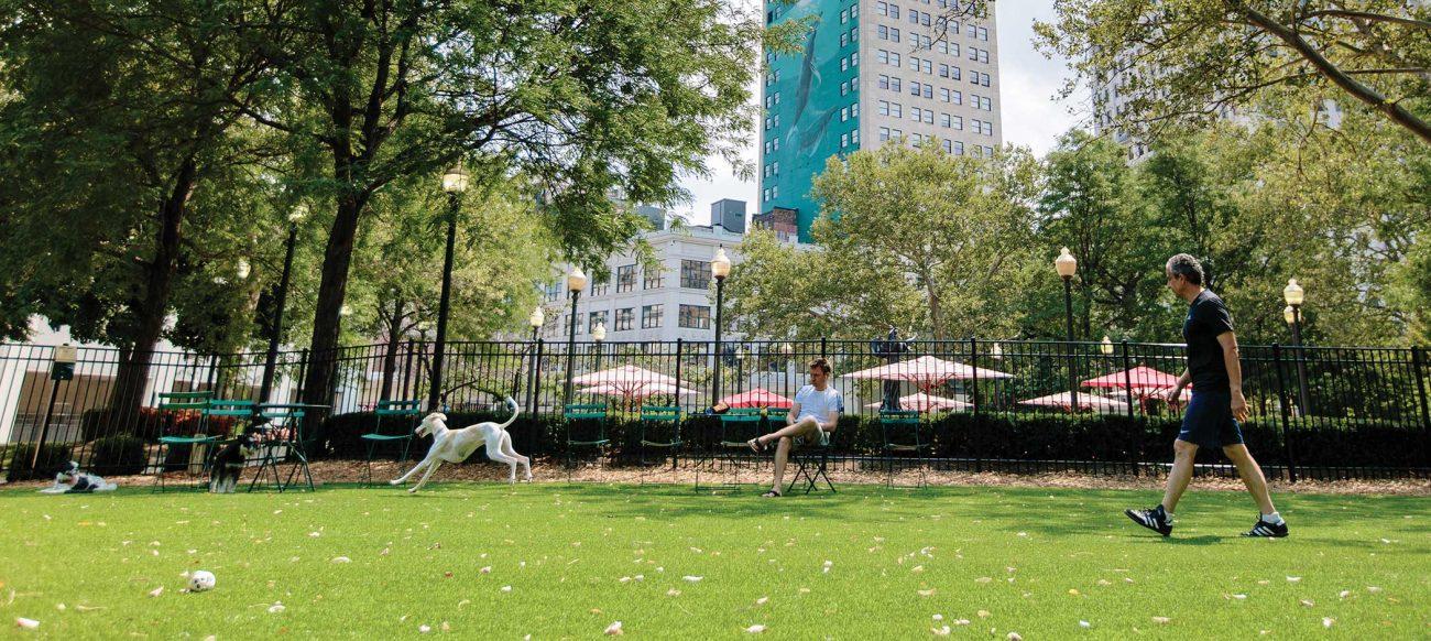 Grand Circus Dog Park