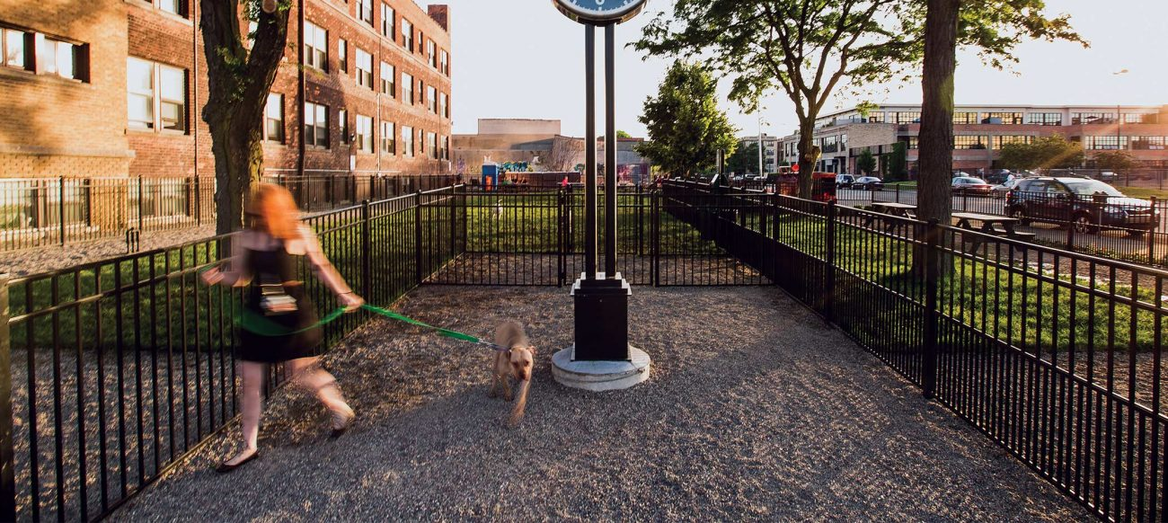 Midtown dog park