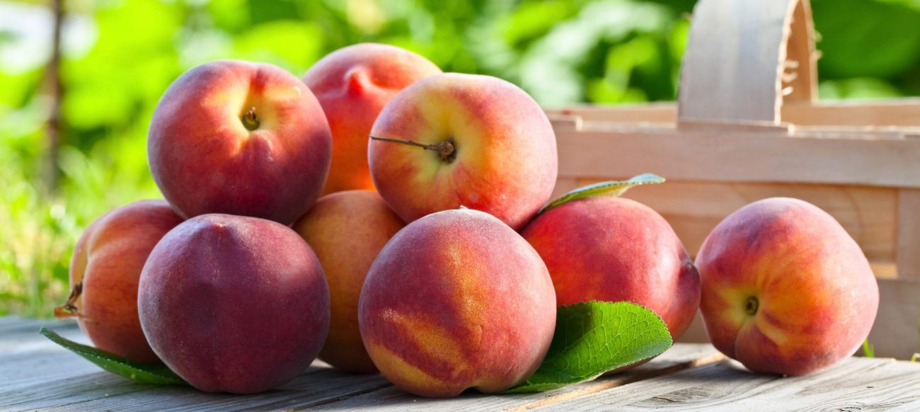 Michigan Peach Festival of Romeo peaches